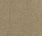 R1-18 Sugar - Revolution Fabric