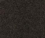 R1-36 Delight - Revolution Fabric