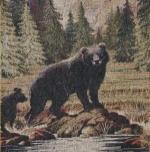 16-54 R. Bradley